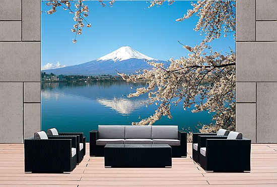 Mt Fuji Japan DS8075 roomsetting