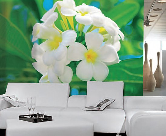 Frangipani Blossoms Mural 286 by Ideal Decor