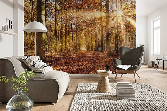 Golden Dawn Wall Mural 8-997 by Komar Roomsetting