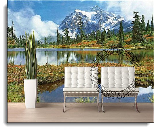 Mt Shuksan And Picture Lake Wall Mural DS8036