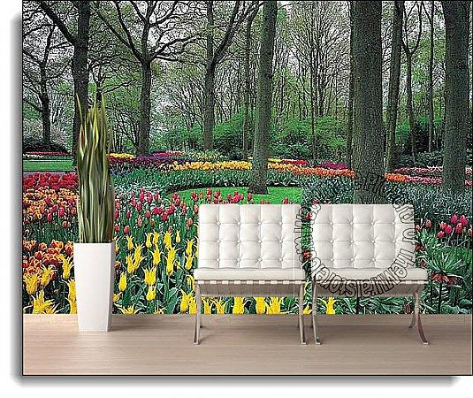 Tulip Garden Wall Mural Ds8042