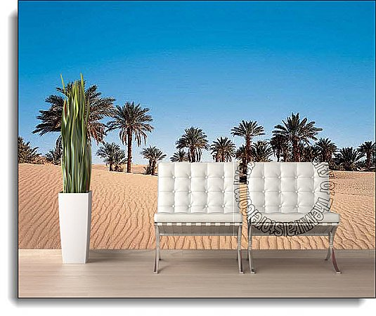 Desert Palm Wall Mural DS8068