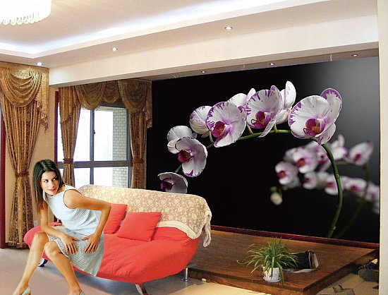 Orchids Flowers Wall Mural Roomsetting