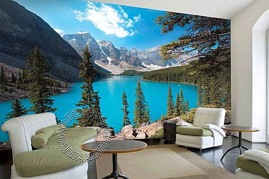Northern Exposure Mural PR98079  8060 roomsetting