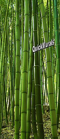 Bamboo Grove 1-piece Peel & Stick Door Mural