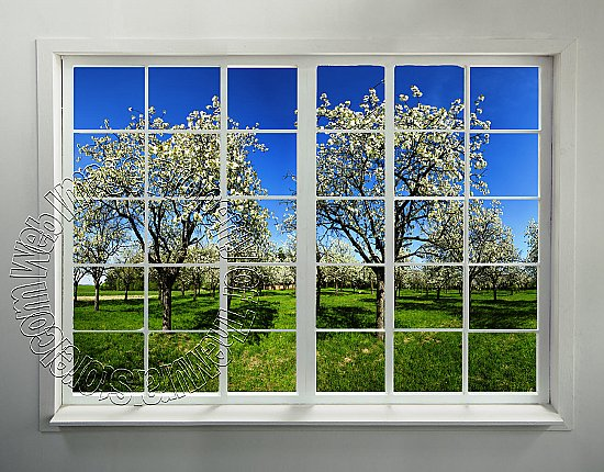 Orchard Window Peel and Stick Wall Mural