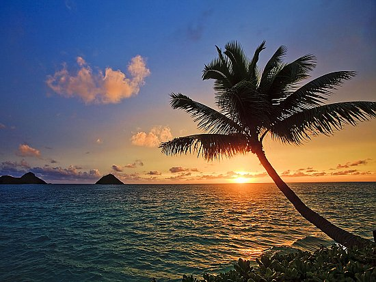 Tahiti Sunset Peel & Stick Canvas Wall Mural