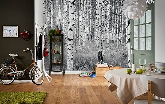 Birch Forest by Komar XXL4-023 Roomsetting