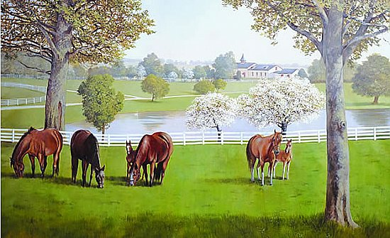 Lexington Horse Farm Wall Mural