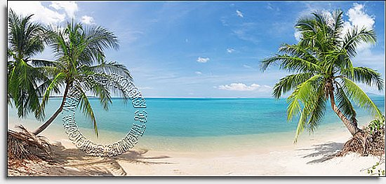 Coconut Beach Panoramic One-piece Peel & Stick Canvas Wall Mural
