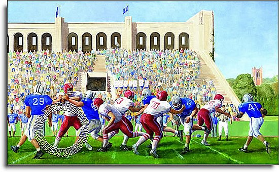 Football Stadium Mural IN2676M MP4978M