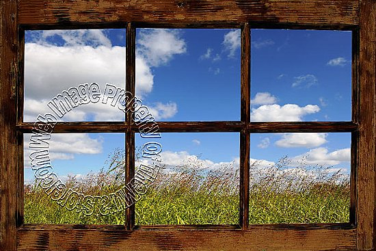 Country Meadow Window Peel and Stick Canvas Wall Mural
