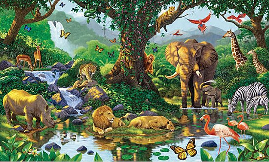 Natures Harmony Wall Mural C845