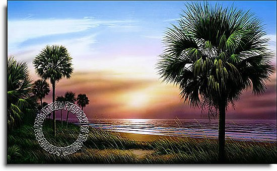 Palmetto Sunrise Mural RA0134M