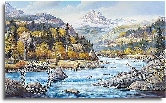 Elk Country Mural C827 by Environmental Graphics