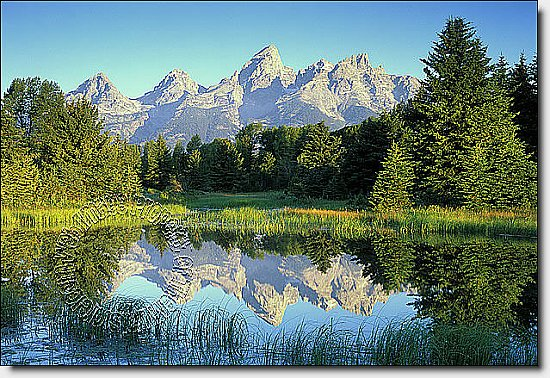 Mountain Reflection One-piece Peel & Stick Canvas Wall Mural