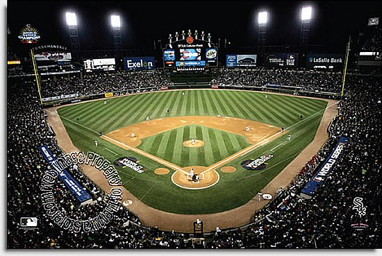 Chicago White Sox/U.S. Cellular Field Mural MSMLB-CWS-CNS12005S