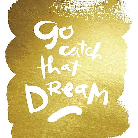 KATHY DAVIS CATCH THAT DREAM GOLD FOIL PEEL AND STICK GIANT WALL DECALS