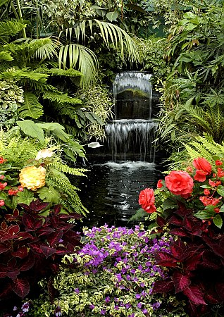 Floral Waterfall